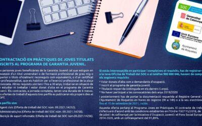 Contractació en pràctiques de joves titulats inscrits al programa de Garantia Juvenil